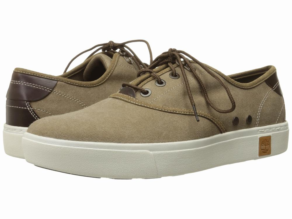 Giày Sneaker Nam Timberland